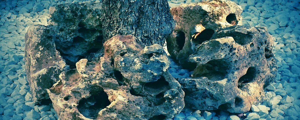 Rocallas Decorativas